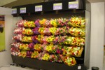 Open floral display case with baskets - Borgen Systems