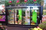Four door floral case - Borgen Merchandising Systems