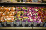 Borgen Systems low profile flower case with pull out drawer