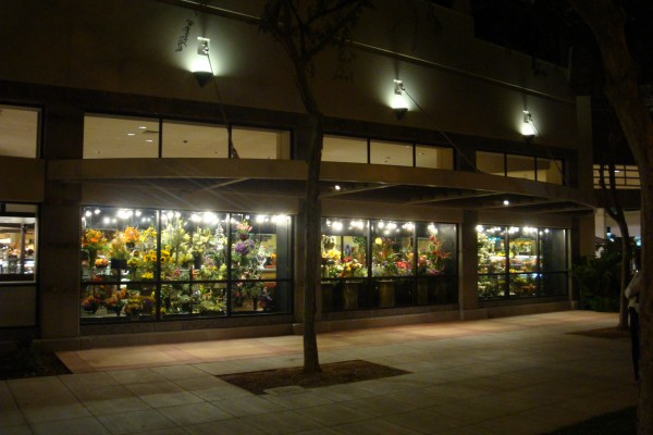 Exterior view of 17-door floral display case - Borgen
