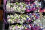 borgen floral cases for sale