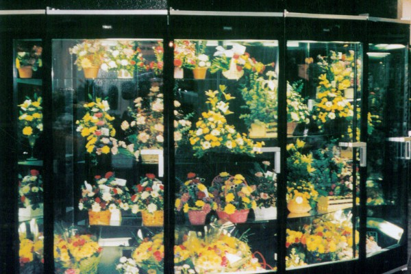 Five door floral refrigerator - Borgen Systems
