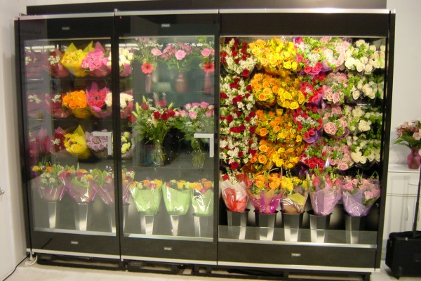 2-door combination floral case from Borgen Systems