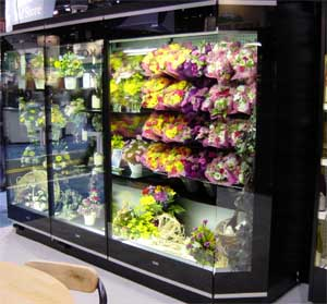 2 door flower combination refrigerated display case